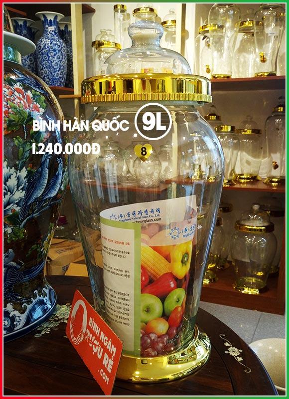 Bình ngâm rượu thủy tinh Hàn Quốc 9L cao cấp