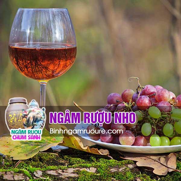 Rượu ngâm hoa quả nào ngon nhất - nên ngâm rượu với quả gì? | bình ngâm rượu rẻ