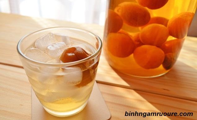 Top 10 loại rượu ngâm hoa quả, thảo dược tốt nhất - Tác dụng của rượu ngâm dược liệu